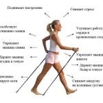 Занятия скандинавской ходьбой в Минске